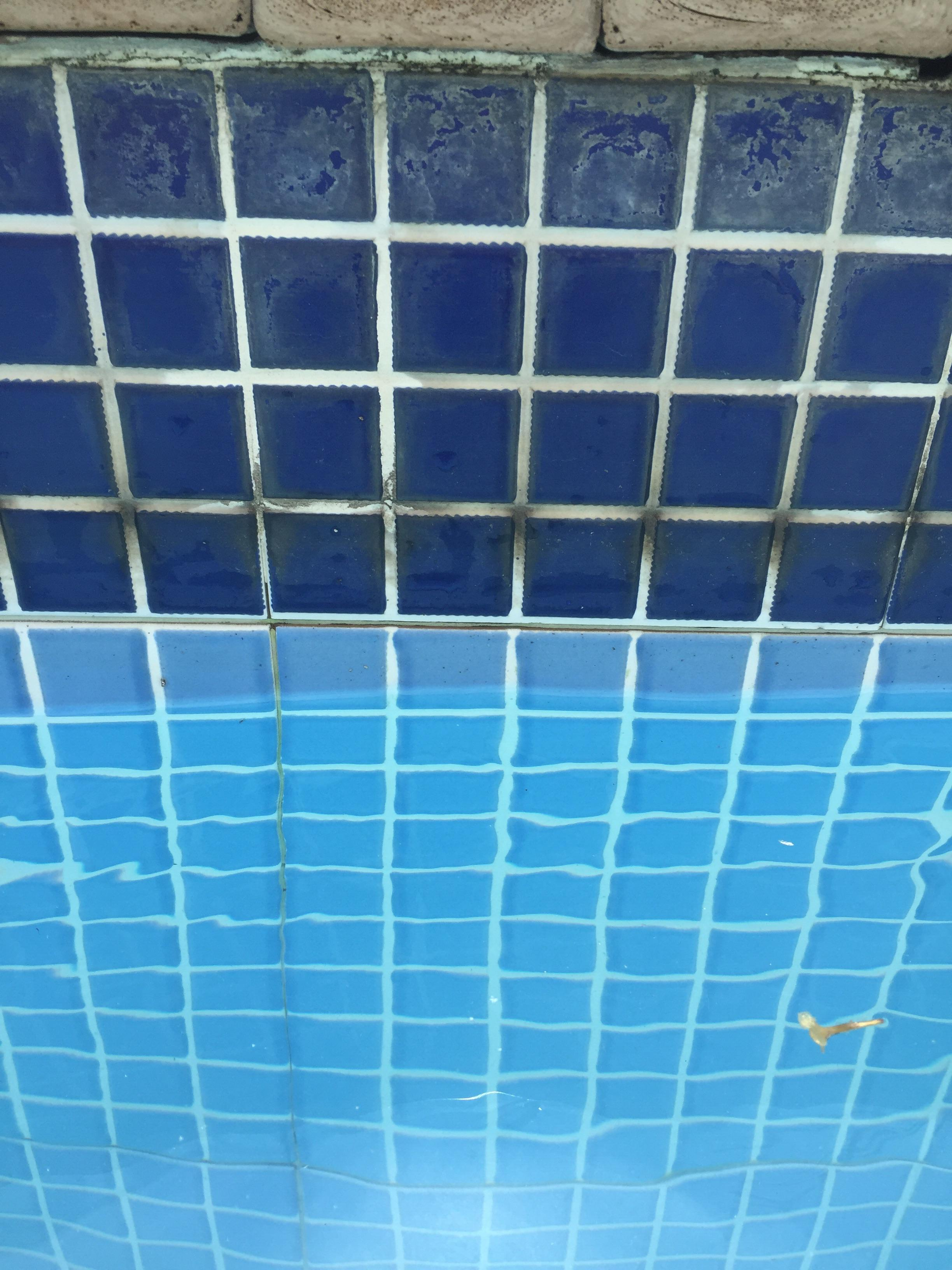 how do i clean these pool tiles i