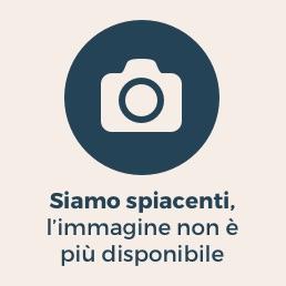 https://i1.wp.com/i.res.24o.it/images2010/SoleOnLine5/_Immagini/Notizie/Italia/2013/04/camera-votazione-lapresse-258.jpg