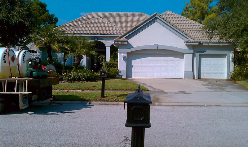 Tile Roof Cleaning In Tampa Florida Area Imag0310