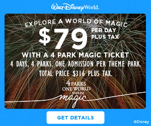 Endless Magic 4 Parks