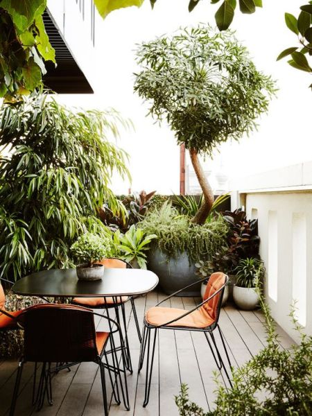 roof garden trees 28 Rooftop Gardens That Inspire To Have Your Own One