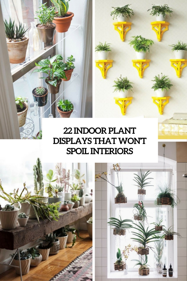 Hanging Small Planters Indoor