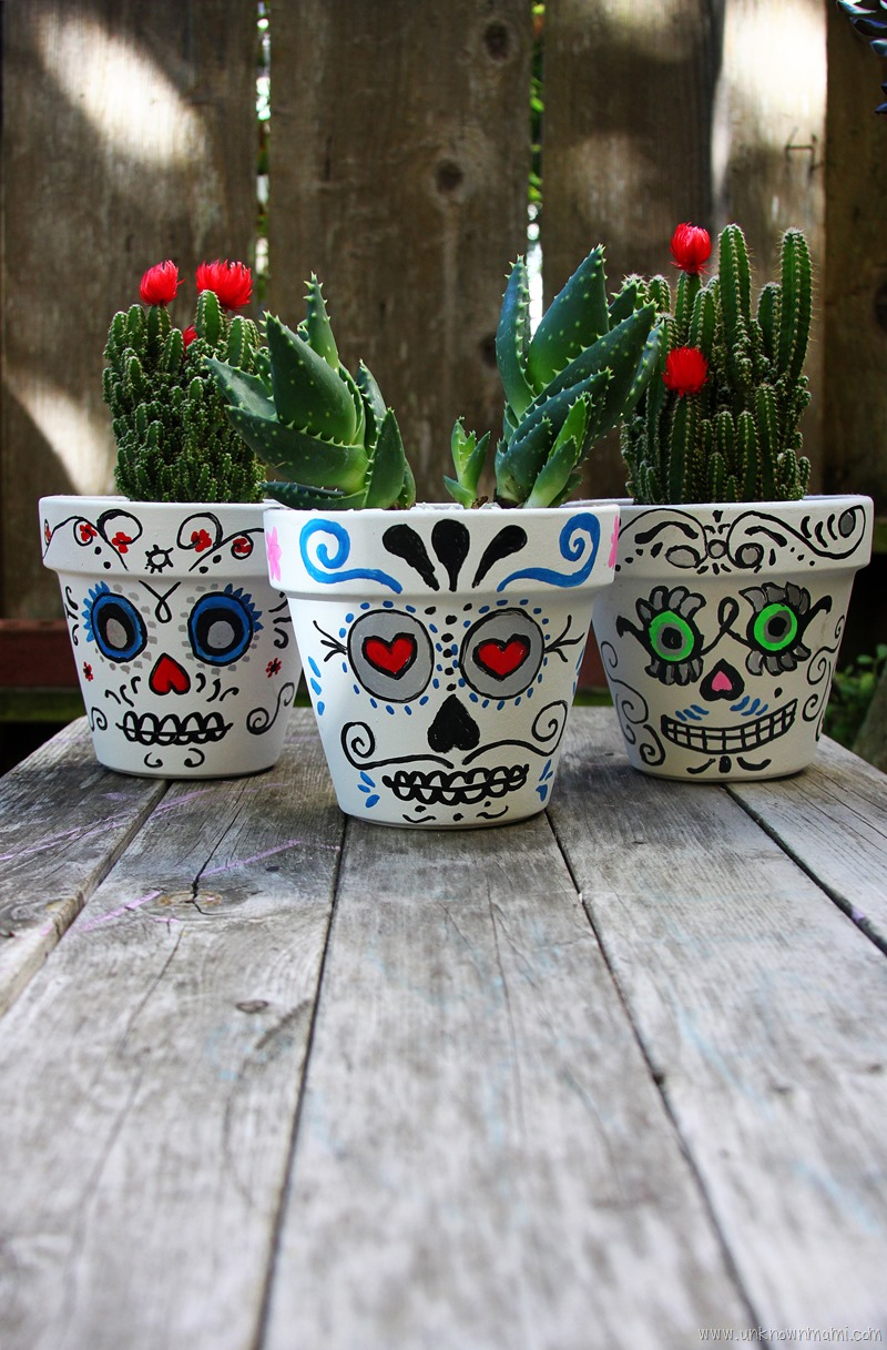 Easy Flowers Grow Pots