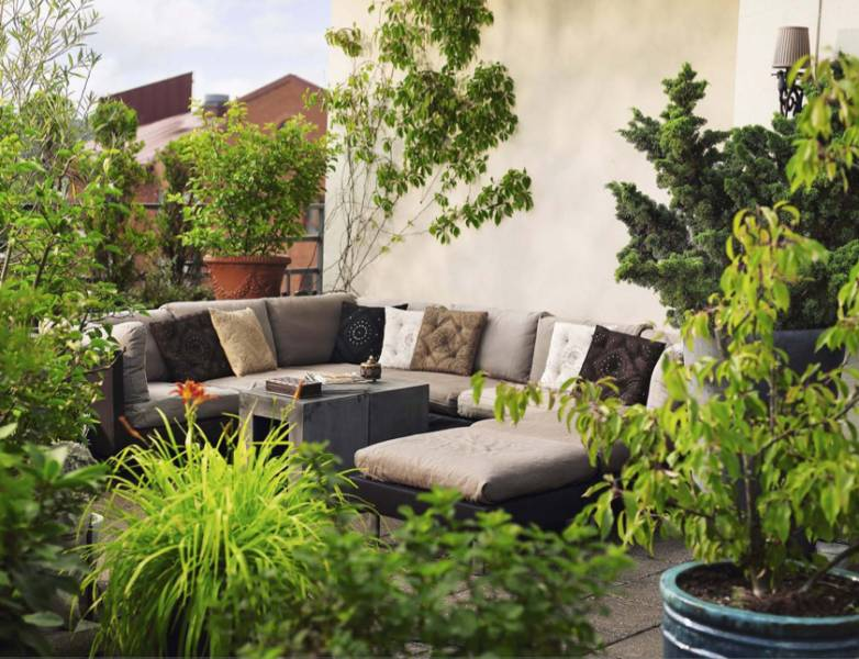 Picture Of Cool Backyard Designs on Cool Backyard Decorations id=15011
