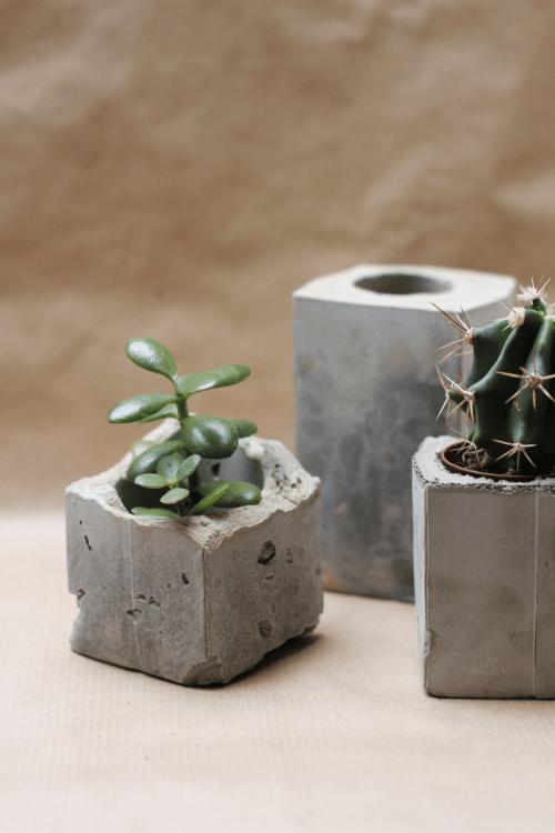 DIY Spray Painted Concrete Planters Shelterness