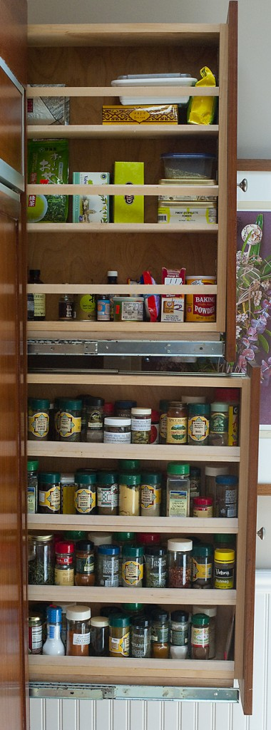 10 Pull Out Spice Storage Solutions Shelterness