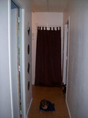 vu porte d entree avec rideau poser