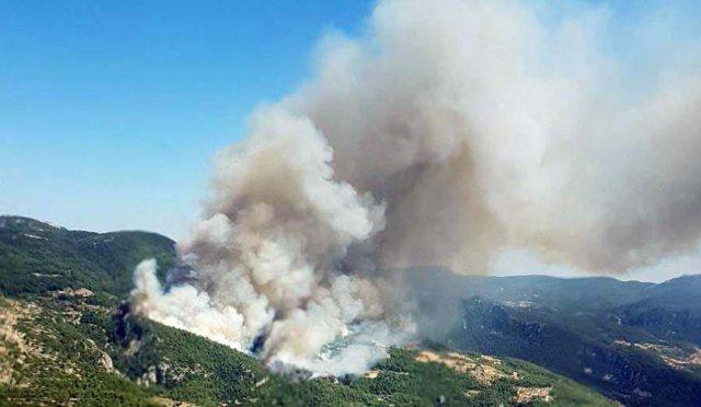Son dakika haberi… Muğla'da orman yangını! Evler yanıyor yaralılar var