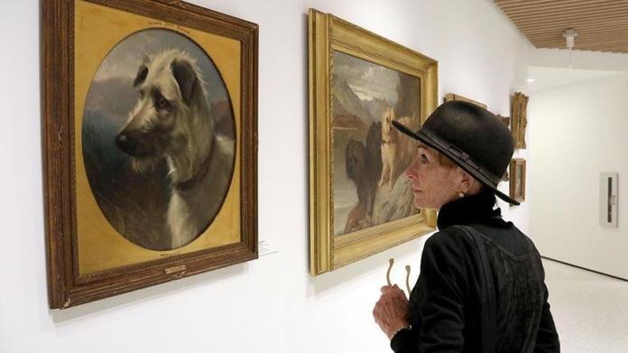 Köpek Müzesi açıldı