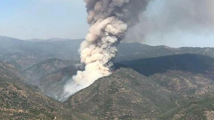 İzmir Bayındır'da yangın!