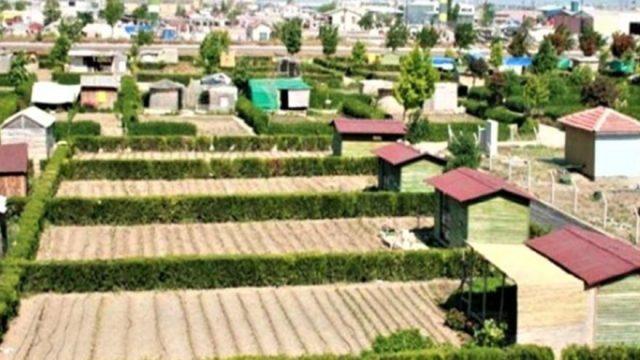 Türkiye'nin yepyeni bir sorunu: Hobi bahçeleri
