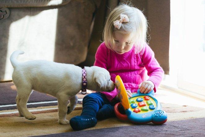 Otizm çocuklarda nasıl ayrım edilir 20