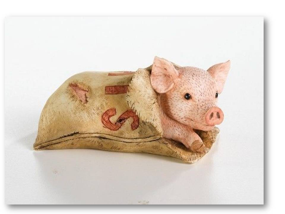 Image result for pig in a poke