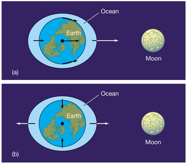 the moon - Different perspective of tidal force on Earth's ...