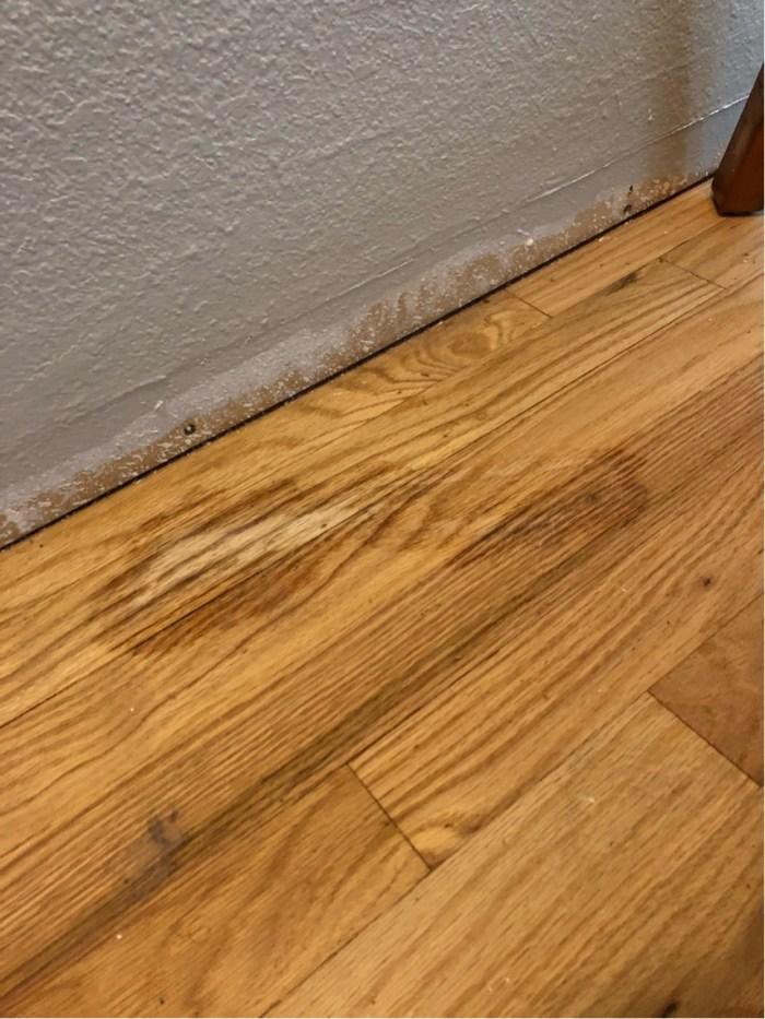 Can I Use Goo Gone On Wood Floors Viewfloor Co