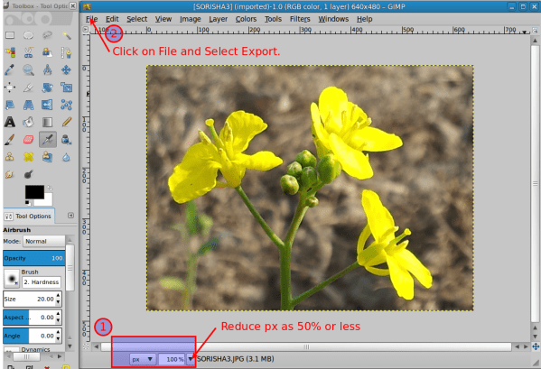 jpeg - how to reduce size of an image from 31.1 kb to ...