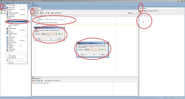 how to run pl/sql program in oracle sql developer - Stack Overflow