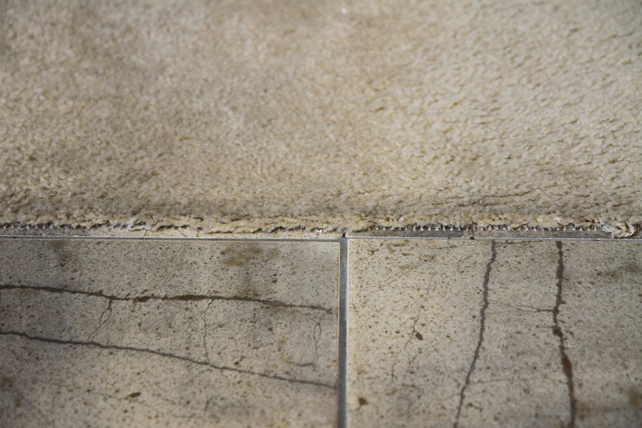 carpet meets tile look