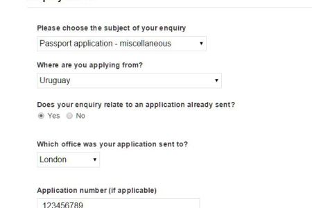 Download Free Template Uk Passport Form Example Filled Free Template