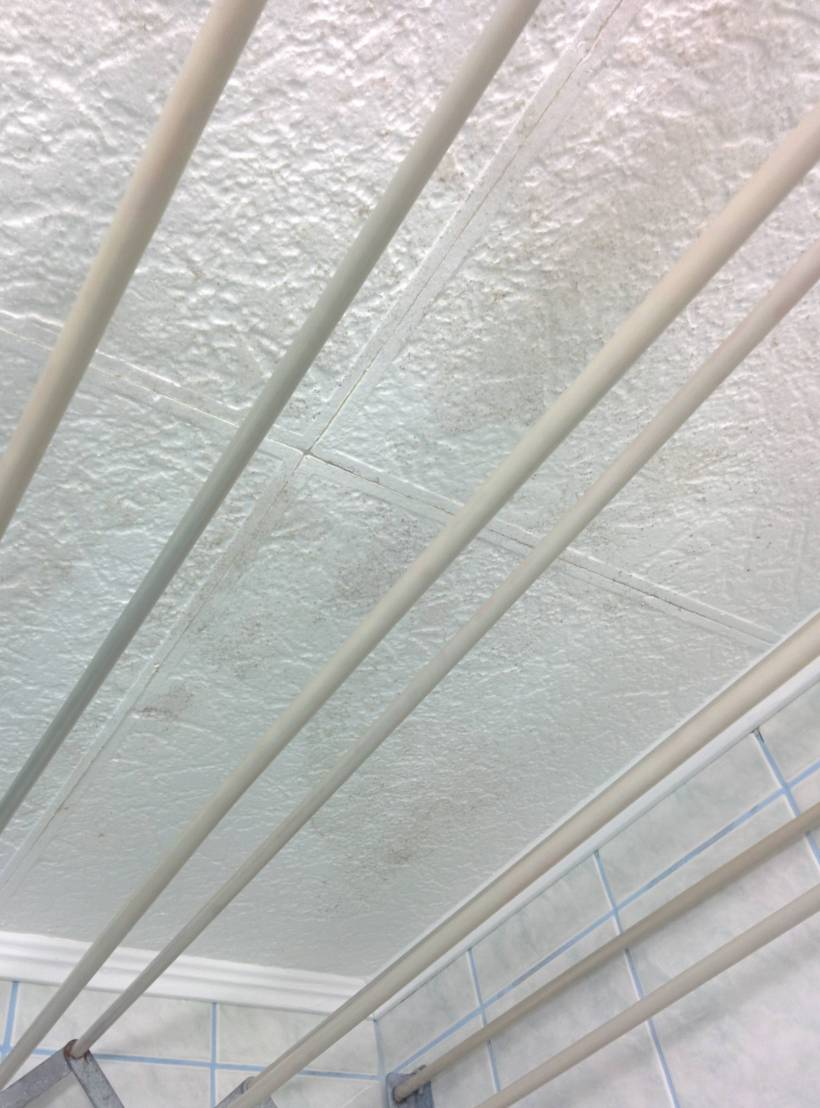 How to remove foam ceiling tiles energywarden how to remove mold from styrofoam ceiling tiles home dailygadgetfo Choice Image