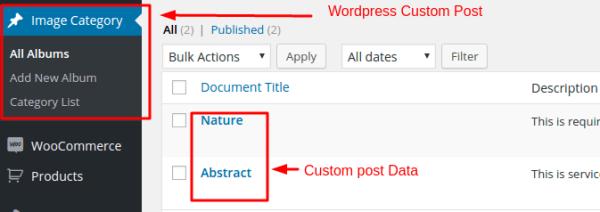 plugins - How to Get WordPress custom post data in ...