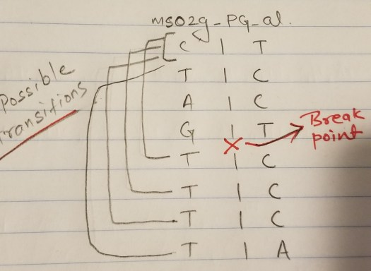 possible transition from PI-6 to PI-4