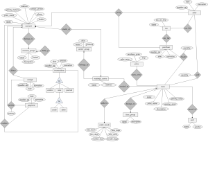 In ER diagram ,is it possible that primary key is not showing?why?  Stack Overflow