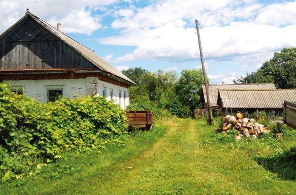 Українське село: вимирання чи еволюція