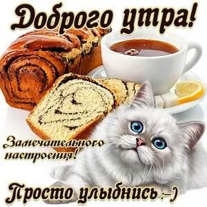 С добрым утром! Прикольные открытки и картинки - новости
