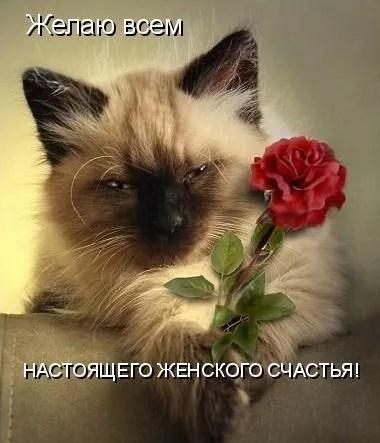Веселые поздравления/картинки/открытки с Днем женского ...