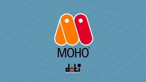 An Introduction to Moho