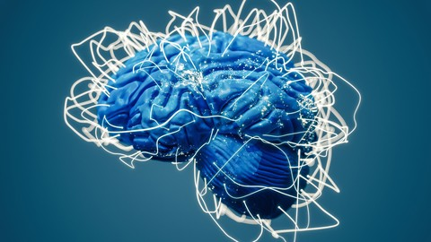Fully Accredited Certification in Neuroplasticity Practice