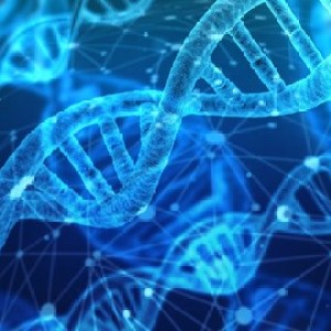 Sale : Udemy: Molecular Basis of Inheritance