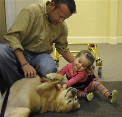 Will Buchanan watches as his daughter Haley, 21 months, pets Viola, a therapy dog, at Children's Inn at the National Institutes of Health. Haley is being treated at NIH for Joubert Syndrome.