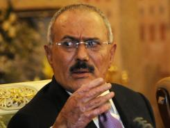 Yemen's outgoing President Ali Abdullah Saleh speaks to reporters on Dec. 24.