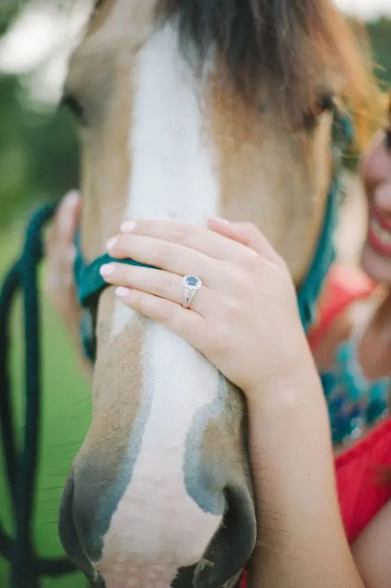 a cute engagement ring on the horse if you love horses or animals on the whole