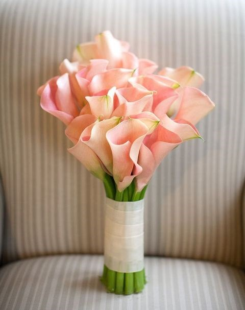 a mono bouquet of pink calla lilies is a cool and timeless idea for every bride