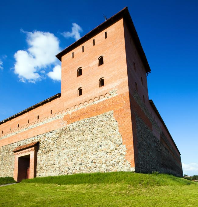 Zamki i pałace pogranicza białorusko-litewskiego