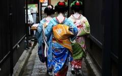 【风雅与传统的传承】艺妓实录