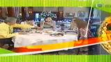 蔡澜逛菜栏第11集 布达佩斯
