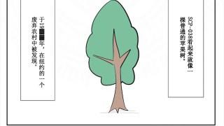 SCP-038 万象树