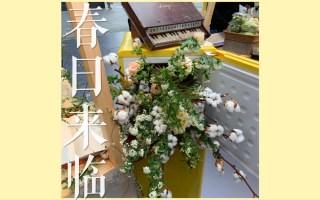【大脸】Vlog #8 春日来临 辣子排骨 / 千玺同款狗啃刘海 / 一个人的电影 / 生活碎片...
