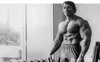 一个视频搞定健身房38种器械