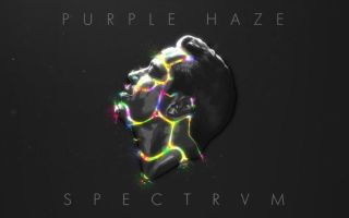 【Purple Haze】Purple Haze presents SPECTRVM (FULL INTERVIEW)