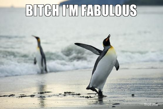 "A picture of a penguin walking with the caption ""Bitch, I'm fabulous""."