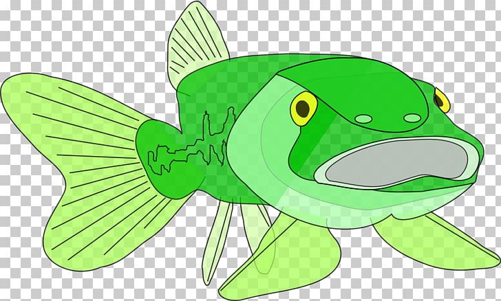 Largemouth Bass Fish Clip Art Fishing Cut Out Png Clipart Pngocean