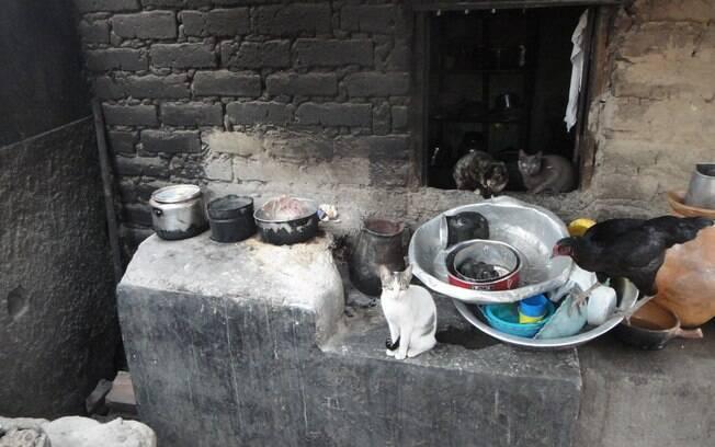 Cozinha da casa de uma família beneficiada pelo Bolsa Família do povoado de Pasmadinho. Foto: Ricardo Galhardo/iG São Paulo