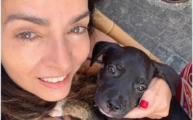 Claudia Ohana devolve cachorros após adoção e vira polêmica ...