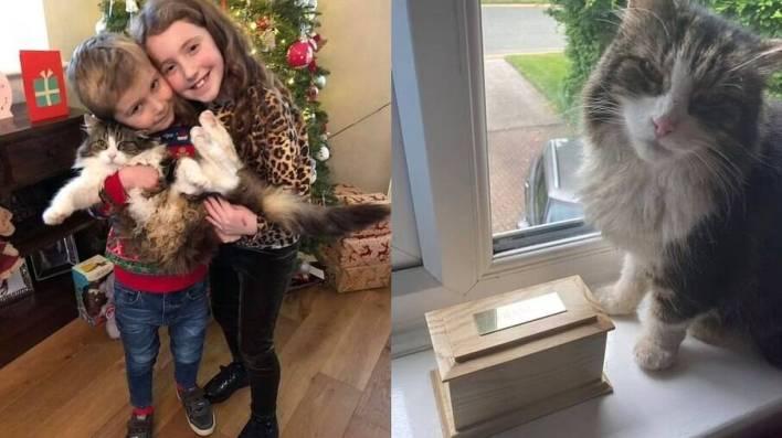 Os dois filhos de Rachel e Frankie, ao lado da urna que contém as cinzas do gatinho desconhecido