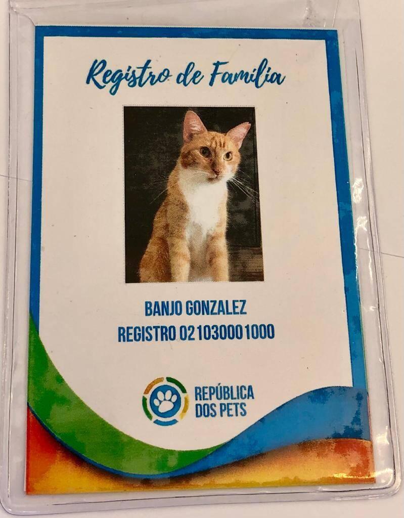 Registro de Família, uma certidão de nascimento para o seu animal de estimação. Foto: Divulgação